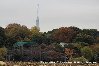 20121208f.jpg