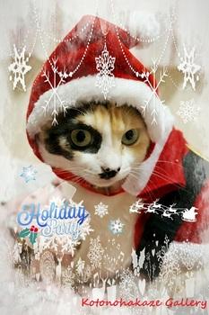 Christmas3a.jpg